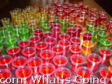Shotski's Jello Shots!
